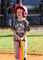 T-Ball Action - Mann Pest V Englewood Youth